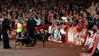 يوروبا ليغ: ارسنال يفتح تحقيقا حول الاحداث في المباراة مع كولن