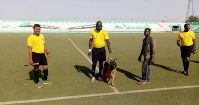 """حكم سوداني يستعين بـ""""كلب بوليسي"""" لحمايته من الجماهير"""